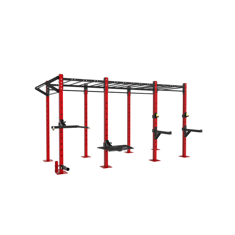 Multi-Function Removable Crossfit Rig